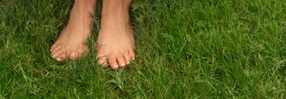 23-feet-in-grass